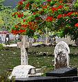 Jamaican Graveyard (7693195420).jpg