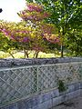 Jardín Casita del Príncipe 04.JPG