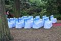 Jardin Botanique Royal Édimbourg 34.jpg