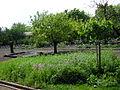 Jardin botanique de la Charme.JPG