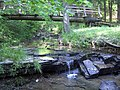 Jefferson Memorial Forest-Bee Lick Creek.jpg