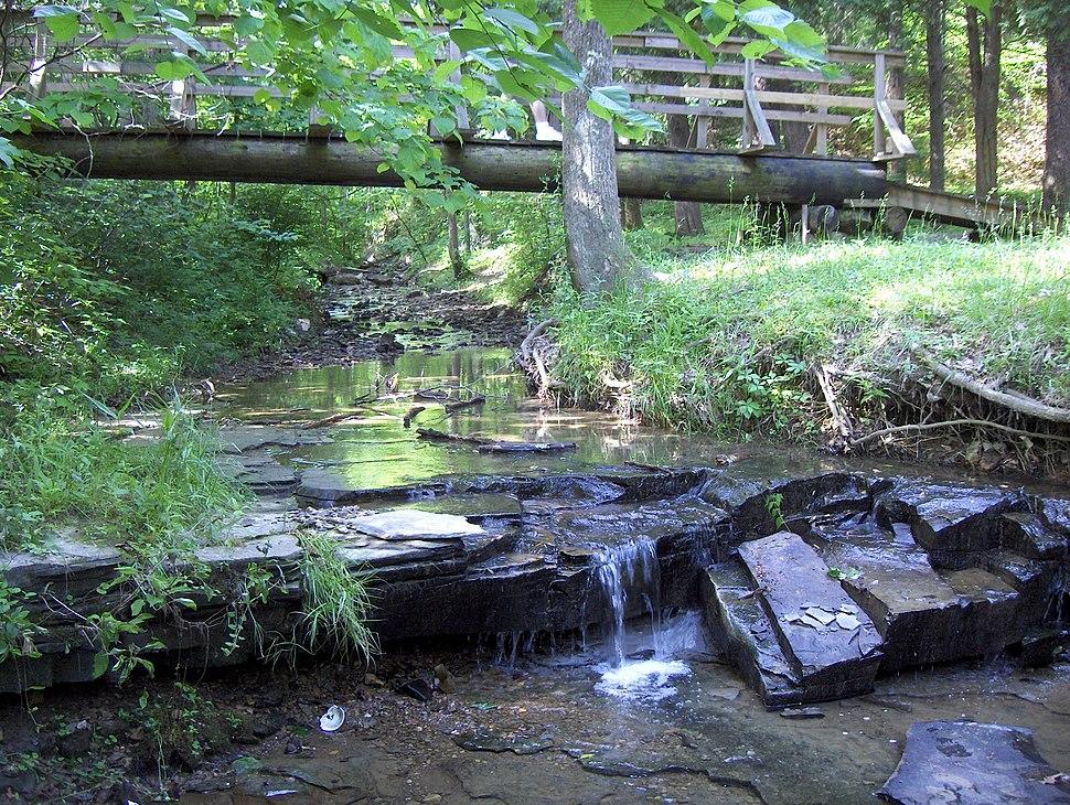 Jefferson Memorial Forest-Bee Lick Creek