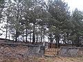 Jewish cemeteries in Vileyka 01.jpg