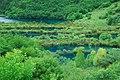 Jiuzhaigou, Aba, Sichuan, China - panoramio (79).jpg