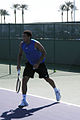 Jo-Wilfried Tsonga Better Shape 2008.jpg