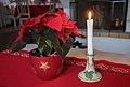 Julstjärna 001.jpg