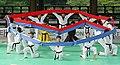 KOCIS Korea Taekwondo Namsan 37 (7628113464).jpg