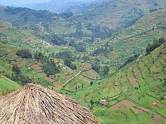 Kabale - Image: Kabale landscape