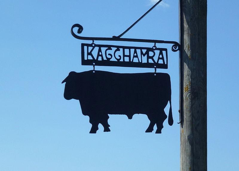 Kagghamra gård 2014b.jpg