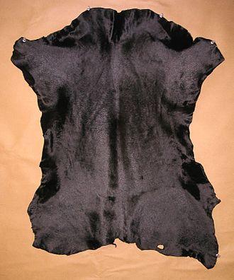 Calfskin - Calfskin leather dyed black