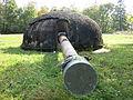 Kastels Turm 1 Kanone.JPG
