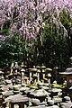Kasuga Taisha - panoramio.jpg