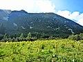Kostenetz, Bulgaria - panoramio (6).jpg