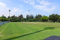 Kowloon Tsai Park Artificial Turf Soccer Pitches 2016.jpg