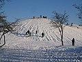 Kroksbäcksparken, vinter.jpg