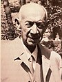 Kurt Heinze (EM Silvania).jpg