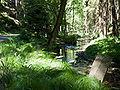 Kyjovské údolí - Křinice podél stezky.jpg