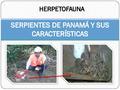 LAS FAMILIAS DE SERPIENTES EN PANAMÁ.pdf