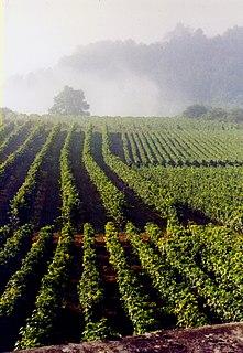 Hautes-Côtes de Beaune