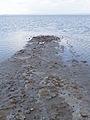 Lac Tuz (6).jpg