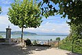 Lac de Morat - panoramio (14).jpg