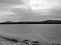 Lago di San Giuliano, bianco e nero.jpg
