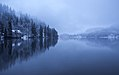 Lake Bled on a foggy and cloudy winter day.jpg
