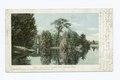 Lake at Palmer Park, Detroit, Mich (NYPL b12647398-62593).tiff