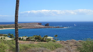 Manele, Hawaii Census-designated place in Hawaii, United States