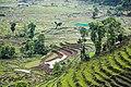 Landscape of Sikkim 02.jpg