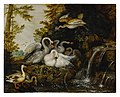 Landscape with swans near a waterfall ).jpg