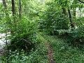 Landschaftsschutzgebiet Warmenau-Ufer LSG OS 00019 Datei 36.jpg