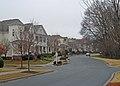 Larger homes facing Natural Park Land Birkdale village (5488720773).jpg