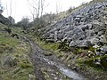 Lathkill Dale Footpath - geograph.org.uk - 717156.jpg