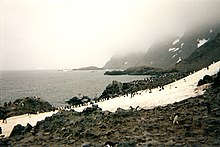 Laurie Island in the South Orkney Islands.jpg