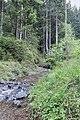 Liebesbankweg - panoramio (15).jpg