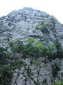Limestone gorge (1070830711).jpg