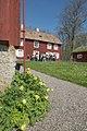 Linnés Hammarby - KMB - 16001000017725.jpg
