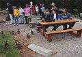 Loch Ness 2000-1-ducks.jpg