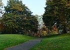 London, Plumstead Common 05