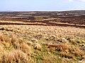 Longtae Valley - geograph.org.uk - 1264172.jpg