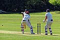 Loughton CC v Ardleigh Green & Havering-Atte-Bower CC at Loughton, Essex, England SX60 19.jpg