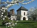 Mânăstirea Snagov.jpg