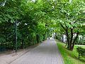 MłynówkaKrólewska-OkoliceUlicyWesele-POL, Kraków.jpg