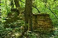 MOs810, WG 2014 39, Milicz Ponds Postolin arboretum (188).JPG