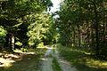 MOs810, WG 2014 39, Milicz Ponds way from Radziadz to Nowe Domy (166).JPG