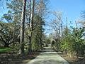 Magnolia Plantation and Gardens - Charleston, South Carolina (8555522497).jpg