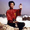 Maitre Hoang Nam.jpg