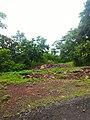 Majhgawan, Madhya Pradesh 485661, India - panoramio (7).jpg