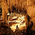 Mammoth Cave travertine formation.jpg